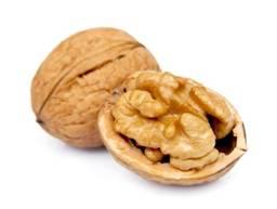 walnut-meat