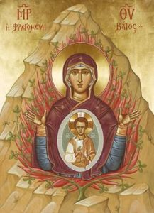 virgin-of-the-burning-bush-sinai